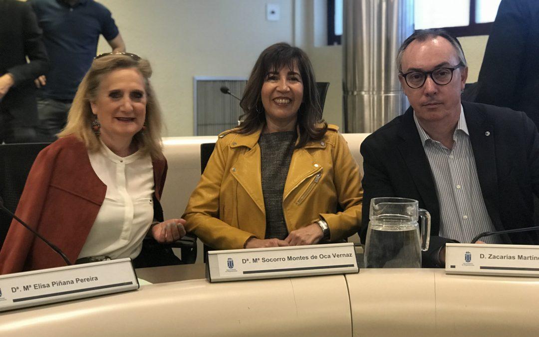 El PSOE pide al Alcalde que se reinvierta el dinero del superávit en mejorar los colegios públicos y los polideportivos municipales
